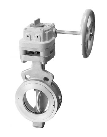 304A ,304Q RPTFE Seated Butterfly Valve