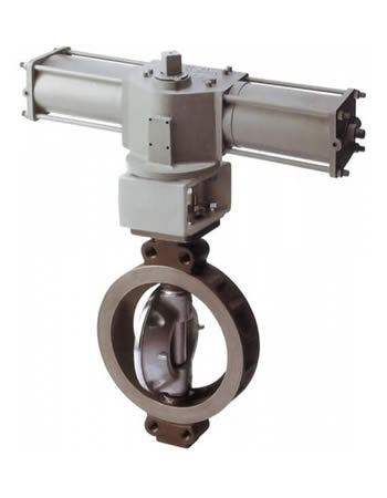 334A / 334Q RPTFE Seated Butterfly Valve